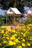camping-isle-verte-bivouac-fleurs-jaunes-800-250192
