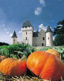 chateau-rivau-citrouille-800-102958
