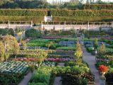 credits-photos-chateau-et-jardins-de-villandry-176-1280-250038