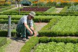 credits-photos-chateau-et-jardins-de-villandry-40-1280-250022