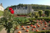 credits-photos-chateau-et-jardins-de-villandry-70-1280-250026