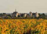 vue-des-vignes-1-1280-249994