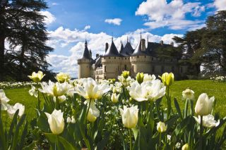 chateau-chaumont-vue-ext-s-franzese-800-114361