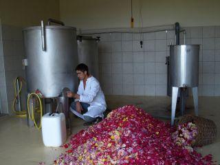 photo-distillation-1280px-244845