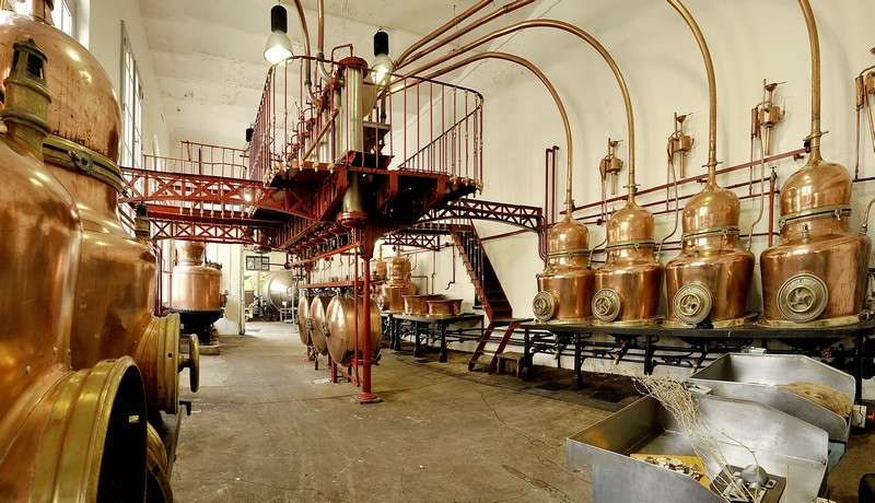 Distillerie Combier © M. Benony
