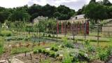 Jardins de Puygirault