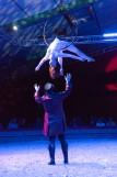 spectacle-la-vie-en-ose-16-11-2019-par-ce-cilia-andre-83-917155